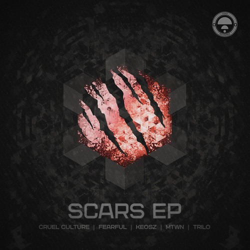 EP cover for the Scars ep